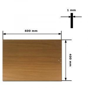 INFRAČERVENÝ PANEL 60x40cm - INFRADŮM