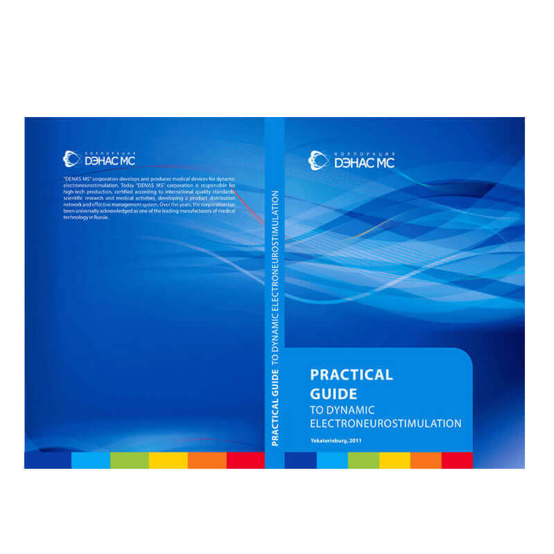 PRACTICAL GUIDE DENAS MS-EN